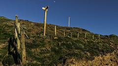posts and the moon (HHH Honey) Tags: cliff moon fence landscape devon signpost fenceposts clifftop telegraphpoles hartlandpoint sonya7rii sony2870mmlens minimoonxi