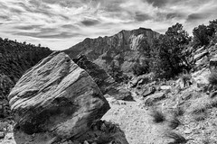 Rock No Roll (brev99) Tags: blackandwhite rock landscape boulder trail zionnationalpark canyons tonality colorefex atx124afprodx d7100 nikviveza tokina1224dxii macphun cacorrection viewnx2