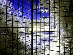 CravaMorozzo2016_IR_4250685 copia (stegdino) Tags: lake fence ir lago infrared refelection infrarosso crava morozzo cravamorozzo