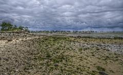 La pluie arrive, il tait temps, le bassin tait vide ! ( Arcachon - France ) (Denis Vandewalle) Tags: sea sky cloud mer water rain landscape pentax pluie ciel nuage paysage plage hdr arcachon k5 ocan aquitaine