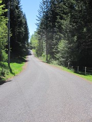 Continuing south on Elk Prairie Road (Tysasi) Tags: permanent dnf brevet 160k sawtell200k