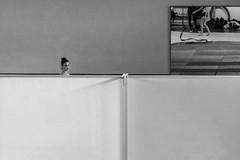 surrealism is everywere (@ntomarto) Tags: blackandwhite bw reflection grey mirror grigio head surrealism biancoenero specchio riflesso surrealismo testa ginnastica gymn ginnasticaritmica antomarto ntomarto