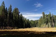 Łąka Crescent Meadow