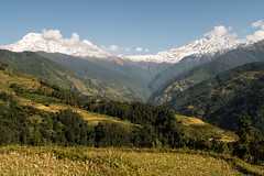 End of the Trek (Steve Vallis) Tags: nepal mountains clouds trek landscape rice paddy valley fields mardi annapurna himal