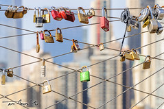 New York (Dec. 2015) (Xtarlight) Tags: newyork manhattan padlocks nuevayork candados fototoni