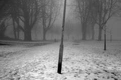Winter Night in the Park (welshio) Tags: park uk winter snow cold fog wales frozen glow cardiff footprints slush eerie spooky lamppost lampost glowing icy elm footpath beech lightanddark pontcanna neonglow frozenground llandafffields treesinthemist mistyfigures