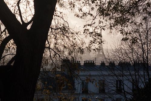 Derrière des feuilles d'automnes, la tour Eiffel