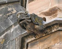 Gargoyles, Tortosa cathedral (Marlis1) Tags: spain catalunya gargoyles gargouille tortosa gargolas wasserspeier panansonic marlis1 tortosacataluñaespaña fz1000 panasonicfz1000 cathedraltortosa