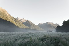 Frozen Valley Fiordland (dan_walk) Tags: new morning travel camping winter summer camp sky 3 mountains cold ice grass fog canon outside outdoors island early frost hiking mark south iii roadtrip adventure clear explore more zealand valley experience nz 5d isolation icy bliss sublime grassland fiordland exploremore