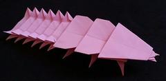 Trilobite beetle (bugbird75) Tags: animal paper insect origami beetle larvae arthropod platerodrilus