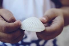 Nature's Treasure (iraisgh) Tags: sea naturaleza white texture beach nature mexico sand hands shell playa manos concha caracola