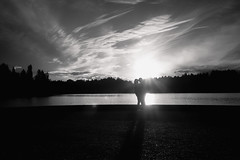 Love in the sun (Warfield360) Tags: trees sunset woman sun man reflection water clouds reflections shadows path silhouettes rays embrace youngcouple heritagepark olympiawa capitollake marathonpark