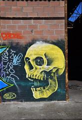 Skull (HBA_JIJO) Tags: urban streetart france art wall painting skull graffiti spray peinture rouen mur 76 urbex hbajijo