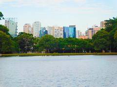 The lake! (denise.bardauil) Tags: park city sky lake building tree nature water duck nikon digitalart