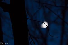 (rbean1229) Tags: nightphotography autumn moon night hiking moonrise