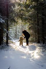 The end of the path.. (allmir_ist) Tags: ski forest vinter path skog akershus eventyr ulqin ulcinj skogen winther fairytail hebekk liridona istrefi allmir hebekkskogen