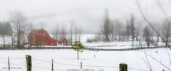 Winter Drive (SimplyAmy74) Tags: trees winter red lake wet rain fog fence driving seasons northwest barns january twin idaho pacificnorthwest twinlakes northern winterwhite oldbuilding redbarn winterwonderland winterweather sundaydrive northidaho iloveidaho sonya7 northwestisbest