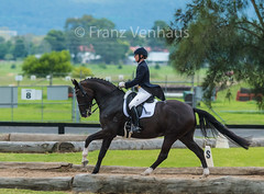 160117_Clarendon_9101.jpg (FranzVenhaus) Tags: horses sydney australia riding newsouthwales athletes aus equestrian supporters riders officials dressage spectatorsvolunteers