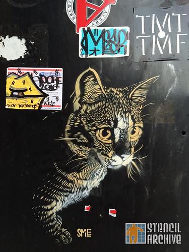 SMiLE_Boulder_cat03