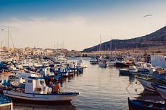 Favignana - Porto (federico.fanalista) Tags: porto isola favignana