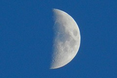 Half Moon (DaveJC90) Tags: camera blue winter light shadow sky moon black cold colour detail night digital dark lens nikon colours bright zoom freezing sharp craters crater freeze crop round half planet coolpix gibbous oval waxing croped sharpness 450mm s9100