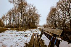 (21/366) Winters bankje (48/365) (MJ Klaver) Tags: bench vanishingpoint wideangle photoaday 1020 drenthe bankje sigma1020mm 100x project365 verdwijnpunt project366 thelonelybench sigma1020mmf35exdchsm image21100 366the2016edition 3662016 100xthe2016edition 100x2016