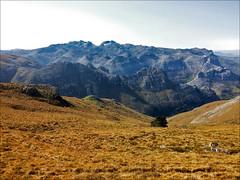 Montaña Oriental (JLL85) Tags: españa mountain nature yellow landscape view hill cantabria