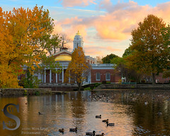 Fall colors and ducks by city hall and the Duck Pond (Singing With Light) Tags: autumn sunset fall reflections photography cool october cityhall sony ct milford 25th 2015 mirrorless sonykitlens sony16mm28 lowerduckpond upperduckpond singingwithlight singingwithlightphotography alpha6000 sonya6000 lightjj