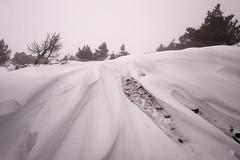 Le royaume d'ole (Laurent J. ZL) Tags: snow fog snowdrift paca neige 1912 provence mont brouillard geant 84 vaucluse ventoux serein congere laurentjzl laurentjouffre loeildelaurent