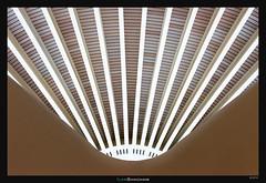 Bilbao Fan (Ilan Shacham) Tags: abstract lines architecture spread fan airport spain geometry fineart terminal bilbao calatrava straight minimalism curved santiagocalatrava fineartphotography projecting
