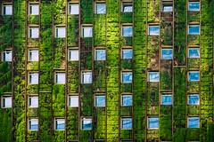 The Living Wall (v_kalathil) Tags: chile blue windows santiago reflection green architecture america south cl repeating lascondes reginmetropolitana