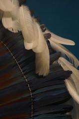 Headress at National Museum of the American Indian (Takhte-Sarah) Tags: newyorkcity newyork museum smithsonian manhattan guggenheim nmai metmuseum smithsoniannmai newyorkarchitecture