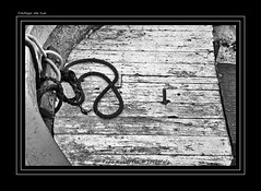 "CUBIERTA DE POPA (CODIGO DE LUZ ""El Fotgrafo"") Tags: blackandwhite bw textura byn blancoynegro monocromo madera barco popa ceuta brancoepreto barcopesquero traia pepegutierrez ceutalaperladelmediterrneo pgutierrez cdigodeluz temasmarineros puertopesquerodeceuta"