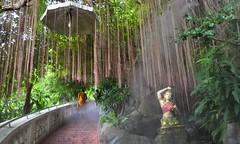 Ascending through the Mists (IrishNimue) Tags: orange mist misty stairs thailand bangkok steps peaceful monk buddhism holy spiritual mystic blessed upwards goldenmount ascending