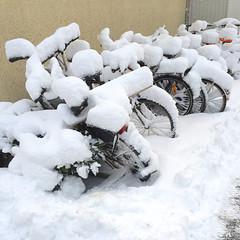 Waiting for Warmth (hansn (2 Million Views)) Tags: winter snow gteborg square vinter sweden bicycles sverige sn goteborg squarish bildstrom