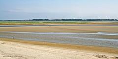 Baie de Somme - Marquenterre 2006  (25) (roland dumont-renard) Tags: mer vent sable plage picardie stvalry prssals marquenterre somme baiedesomme marebasse lecrotoy promeneurs ctepicarde bancsdesable