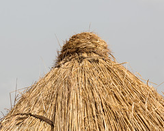 mpilinyuuwa = top knot of thatched roof (whaun) Tags: ghana gh roofing thatchroof nalerigu eastmamprusidistrict
