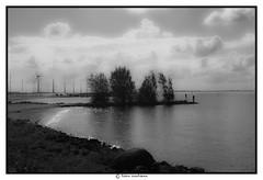 De wind blaast de kleur weg (voorhammr) Tags: john jan maurice boten debby zon vuurtoren henk urk schepen blauwelucht cameranunl