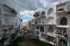 White Cemetery - Casares, Spain (N+C Photo) Tags: world life travel viaje sky espaa holiday history tourism cemetery clouds dead photography photo spain nikon europe mediterranean image earth explorer culture andalucia best graves adventure explore spanish vida cielo nubes civilization mundial nikkor dslr andalusia visual malaga vacaciones mundo learn global iberia discover aventura espaol d800 tierra andaluz casares 1635f40