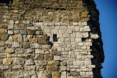 Witness #2 (S. Hemiolia) Tags: castle castles zeiss ruins 180 tuscany olympia dxo toscana pietra castello manualfocus f28 arezzo rovine valdarno sonnar mattoni 180mm bucine cennina d700 valdambra