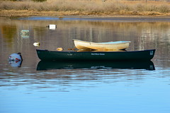 DSC_0740 (Six Sigma Man (Thank you for the 1.9M+ views)) Tags: nikon longisland nikond3200 coldspringharbor