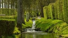 green green green (Yasmine Hens) Tags: green water eau europa flickr belgium sony ngc vert cascade parc namur hens yasmine wallonie annevoie iamflickr sonyalpha7 flickrunitedaward hensyasmine