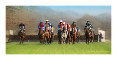 THE STEEPLECHASE (Lucky Del) Tags: uk sport scotland jockey horseracing 2012 steeplechase pointtopoint clydevalley derekmonaghan overtonfarm