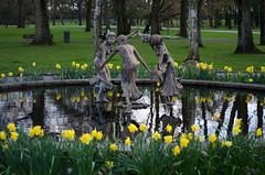 Rotterdam 10-04-2016 SM-16 (Pure Natural Ingredients) Tags: park flowers holland garden spring nikon d70 nederland thenetherlands sigma f18 f28 bloemen euromast zuid 105mm niceweather voorjaar schoonoord d90 50mmoutdoor botanicbotanishetuin
