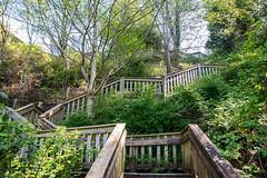 1001 Steps in Ocean Park (TylerIngram) Tags: park surrey crescentbeach oceanpark explored southsurrey explorebc photos604