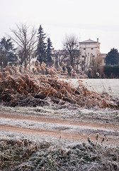 Italian Villa in the Countryside (CaptureTheDetails) Tags: winter ice nature countryside frozen italian natural brina villa campo icy inverno veneto