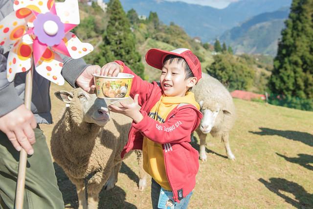 戶外親子攝影,全家福攝影推薦,兒童親子寫真,兒童攝影,南投清境攝影,紅帽子工作室,婚攝紅帽子,清境小瑞士攝影,清境農場親子,清境農場攝影,親子寫真,親子攝影,familyportraits,Redcap-Studio-83
