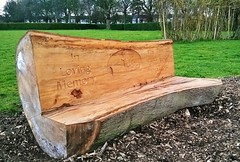 Pickering Park Memorial Log Bench (Allen Stichler) Tags: bench fishing log memorial carving hull beech trawler pickeringpark carvings339