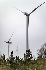 It is impossible to change the direction of the wind (dorablancoheras) Tags: mist fog energy power wind viento mount monte niebla renewable mistery misterio energa renovable