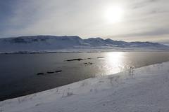 Valaistunut maisema -   Enlightened landscape (ikithule) Tags: winter sea sun snow mountains landscape iceland minimalism lumi talvi meri maisema aurinko vuono vastavalo minimalismi vuoret jannemaikkula ikithule